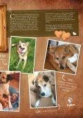 Plätzchen - das Kundenmagazin von dog & dino, Ausgabe 1, 2018 - Seite 7