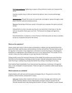 South America Feb Consolidated News Letter for Small Sites - Page 4
