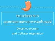 6Bio I Digestive and cellular respiration