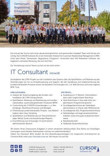 IT-Consultant (m/w) Stellenanzeige