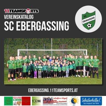 Online Ebergassing2