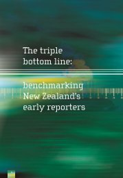 The triple bottom line: benchmarking New Zealand's early reporters