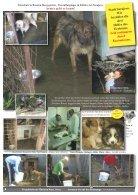 Rundschreiben 03/2014 - Page 4