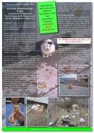 Rundschreiben 03/2014 - Page 6