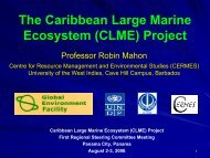 The Caribbean Large Marine Ecosystem (CLME) Project