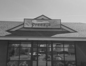Freezia few paces to the west of Post Falls best dental clinic Woodland Family Dental