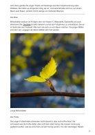 Welche Blätter von Bäumen können wir essen - Page 2