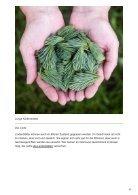 Welche Blätter von Bäumen können wir essen - Page 5