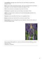 Magische DuftTinkturen beleben unsere Sinne - Page 3