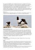 Program Svalbard 2013.pdf - DOF Travel - Page 4