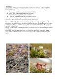 Program Svalbard 2013.pdf - DOF Travel - Page 6