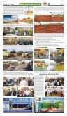 Edição 331 - Page 5