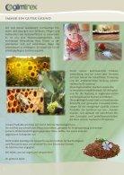 glimtrex Farbsystem Katalog 2018 - Seite 2