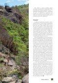 Revista Curinga Edição 23 - Page 7