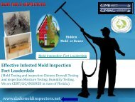 Effective Infested Mold Inspection