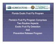 Florida Exotic Fruit Fly Program