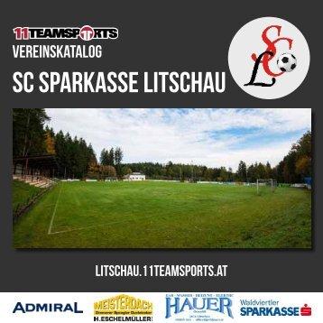 Online Litschau