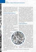 Landraub - Indigener Widerstand in Lateinamerika - Seite 6