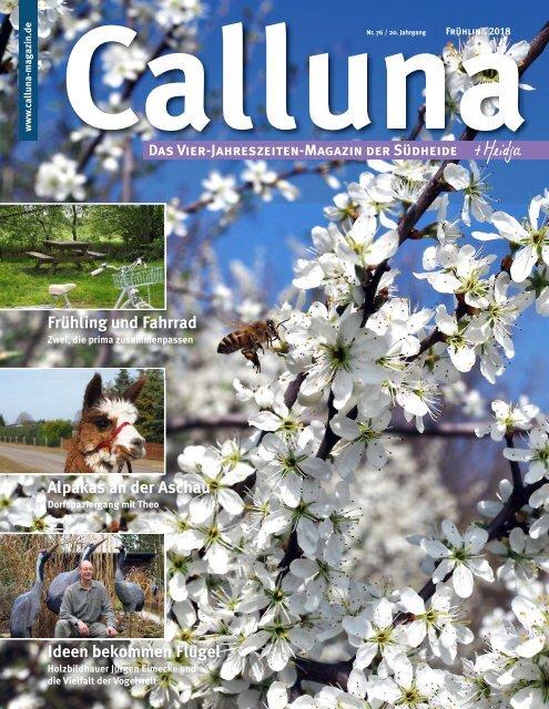 Calluna Frühling 18 mit Heidja