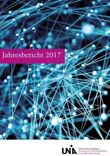 ZIG Jahresbericht 2017