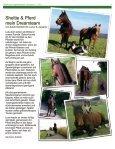 SN_Info1-17-korr - Page 3