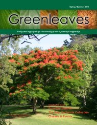 Greenleaves- Spring/Summer-2015