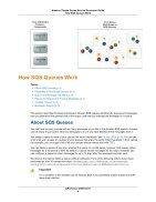 sqs-dg-2009-02-01 - Page 7