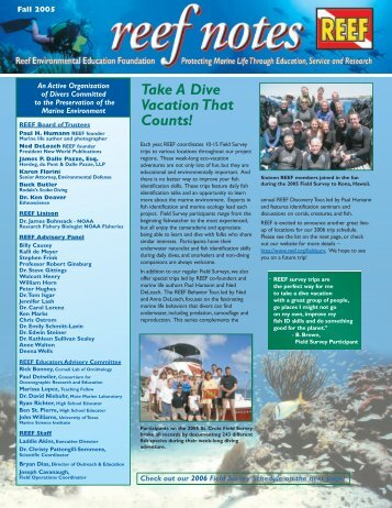 Take A Dive Vacation That Counts! - Reef