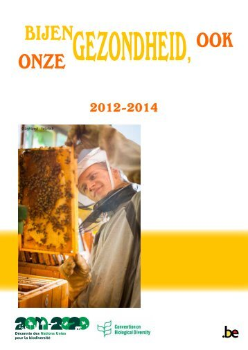 Bijenplan- Bijengezondheid, ook onze gezondheid