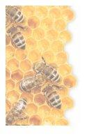 Bijenplan- Bijengezondheid, ook onze gezondheid - Page 6