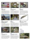 La Pesca Mosca e Spinning 2/2018 - Page 5