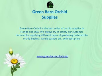 Orchid Baskets for Sale Online in Florida