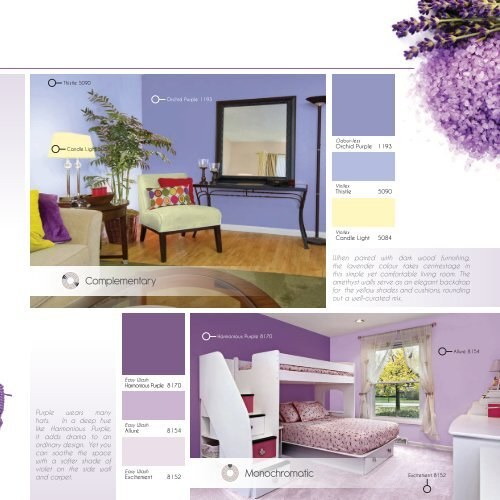 Creative PurplesColour Fa