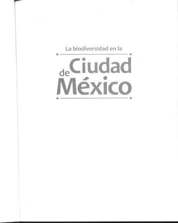 Recuerdos de la Cosecha Lacustre en Xochimilco.