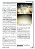 Redescubriendo el Planeta Océano - IUCN - Page 7
