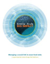 Little Fish, Big Impact - Institute for Ocean Conservation Science