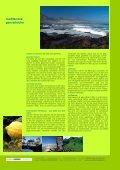 spanien, teneriffa: ocEano, angebote - Seite 2