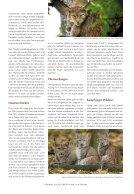 VorhangAuf_114_ET - Seite 3