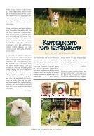 VorhangAuf_114_ET - Seite 7