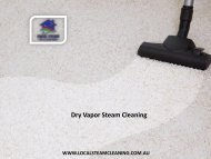 Dry Vapor Steam Cleaning