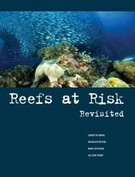 Reefs at Risk Revisited (report - World Resources Institute