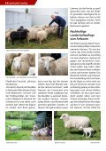 Lankwitz extra Nr. 5/2017 - Seite 6