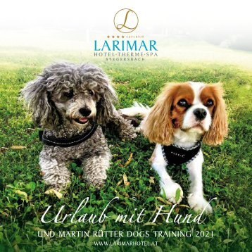 Urlaub mit Hund und Martin Rütter Dogs Training 2019