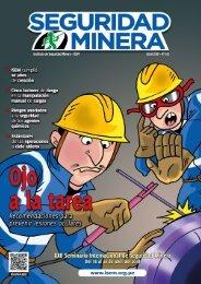 Seguridad Minera Edición 142