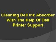 Cleaning Dell Ink Absorber With The Help Of Dell Printer Support