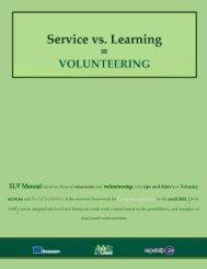 SLV manual