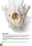3B BIOLOGIE | BIOLOGIE | Bachmann Lehrmittel - Page 6