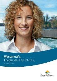 Geschäftsbericht 2009 - Energiedienst AG