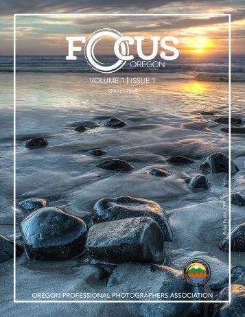 V1 Issue 1