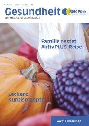 BKK Pfalz 3/10 (pdf)